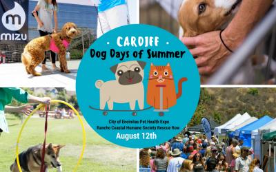 Cardiff Dog Days of Summer 2018