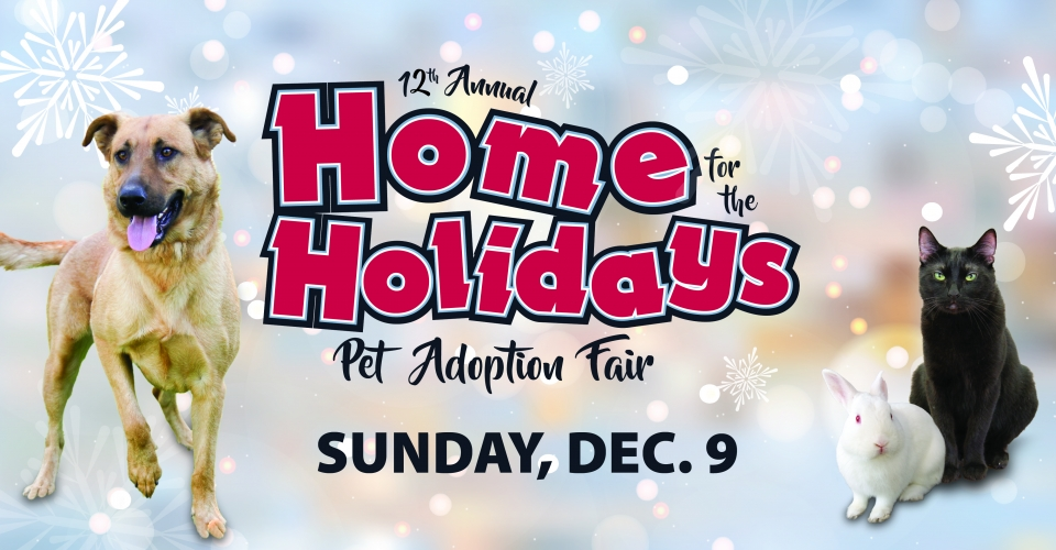 12th Annual HOME For The HOLIDAYS Pet Adoption Fair 2018 Irvine, CA